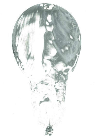 dc_250361
